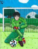 Daisuke plays for Germany 2014 by Lily-de-Wakabayashi