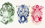 Tiger Trilogy by Nnusia