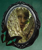 Portrait of a Dryad by Relient-K
