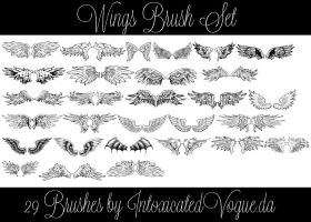 Wings Brush Set by intoxicatedvogue