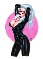 Black Cat Art Nw251 by AlexMirandaArt