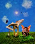 Butter flys and toadstools by PattiPix