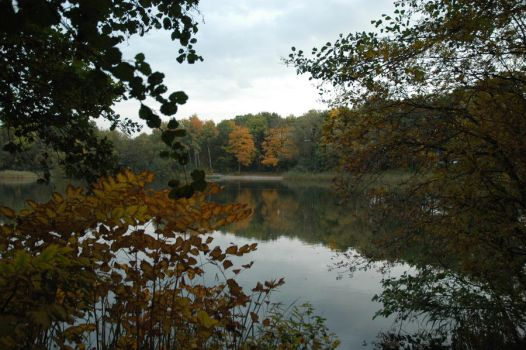 reflection in the lake in Autumn. by klinkie