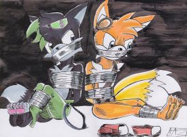 Shadz and Tails tied up by TazHassiotis