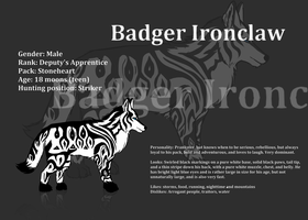 AT: Badger Ironclaw ref sheet by Storm-Cwalker