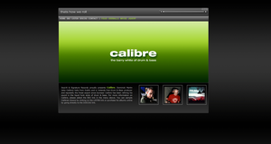Calibre Concept Website by akiwi