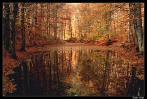 Seven lakes fall season by unclesim