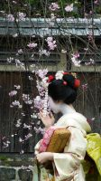 Maiko by thecomingwinter