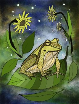 Frog and raindrops by NaliZen