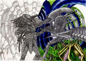alien vs predator color by campfens