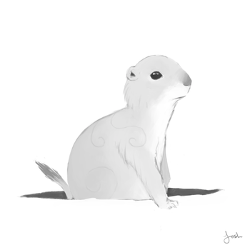 Prairie Dog by Esomnus