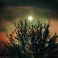 Staggering Moon by SheWalksInSilence