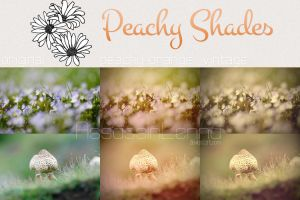 Peachy Shades Photoshop Actions by AssassinLenna