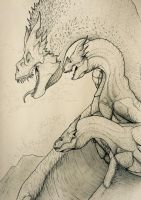Bull Dragon and his two mates by artisticallyautistic