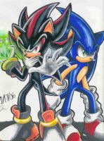 SonShad Rivalry by Sonic-AND-ShadowFans