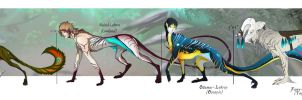 Lebrin Sizes by Tricksters-Adopts