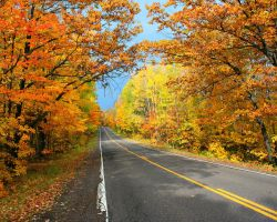 Fall Drive 2 HDR by entropy462