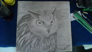 Owl for my mom by Cemhta