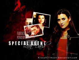 Special Agent Ziva David by KissofCrimson