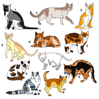 ++Cat Batch Adoptables++ 1 LEFT by KayAdoptables