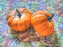 Decorative Pumpkins by jim88bro