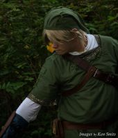 All this cut grass, still no rupees... by Starkiller-Cosplay
