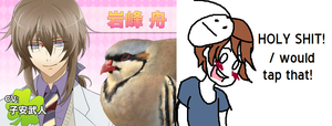 Hatoful Boyfriend by KittyCocoa