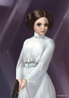 Princess Leia by EyalDegabli