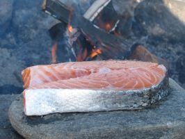 Swedish Salmon Steak by Harkfast