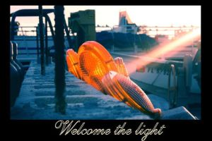 welcome the light by artgecko