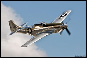 Planes of Fame 37 by AirshowDave