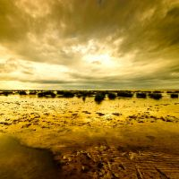 Low Tide III by Dave-Ellis