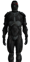 Nanosuit - Reporting for duty by Hiddenus