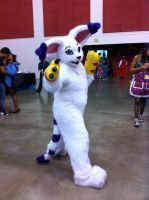 Gatomon at Fanime Con 2011 by LadyAkeldama