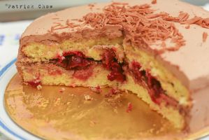 Genoise cake 5 by patchow
