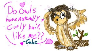 Curly-Haired Owl by NWolfman