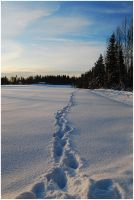 BG Trail In The Snow by Eirian-stock