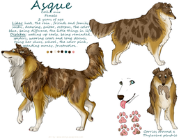 Asque by dalmatianluver