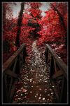 the autumn is here III by Tsapo