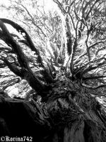 Inside of my mind by Korina742