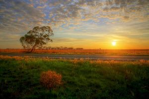 Mallee Sunrise by Bjay70