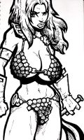 Red Sonja WIP by jabbanot