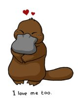 Love the platypus by tomatie