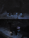 evening cat by avocets