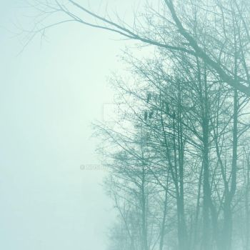 ...in the mist by NuSunt