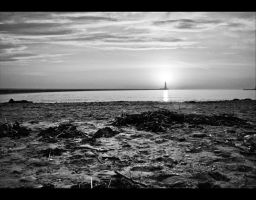 The brightest Lighthouse - BW by Wayman
