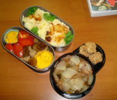 Gratin, spices and autumn fruits bento by Vetriz