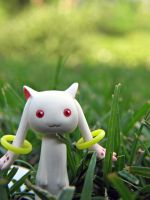 A Wild Kyubey Appeared by Yami-Usagi