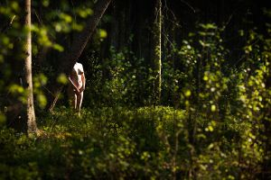 Woman in forest 1 by harryjonesphoto