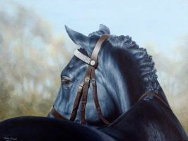 Eclipse - Portrait in Acrylic by andreamichael